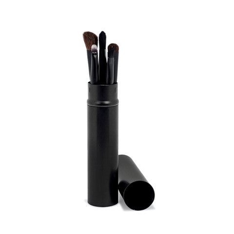 5 Piece Travel Eye Shadow Brush Set