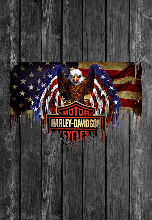 Harley Davidson Motorcycle Eagle Flag Chest Candy | Tshirt, Tshirt Men, Tshirt Women, Custom T, Bespoke T-shirt, Apparel, Clothing
