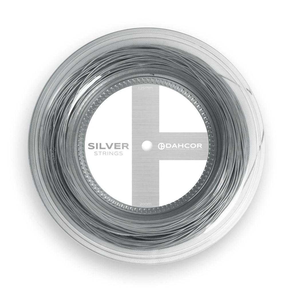 Silver Strings Reel