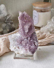 Archetype Laptop Sleeve (Rose) - Sold As-Is
