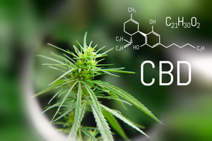 Cannabinoids, Terpenes, & the Entourage Effect