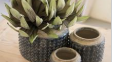 Knobby Ceramic Pots - 13 Hub Lane   |
