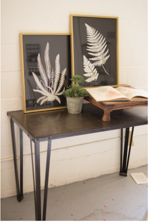 Black & White Fern Prints