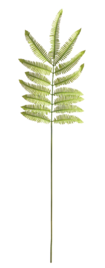 Tree Fern Stem 42.5""