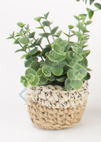 Artificial Potted Eucalyptus - 13 Hub Lane   |