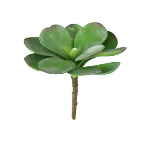 Artificial Paddle Plant