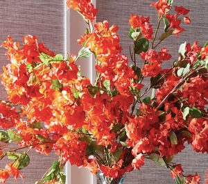 Bougainvillea Stems - 13 Hub Lane   |