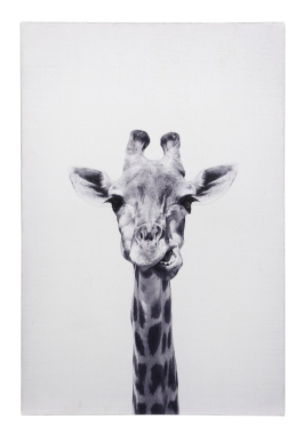 Giraffe Portrait Canvas Art