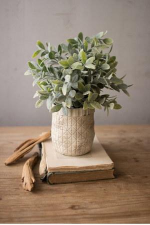 Artificial Sage in White Pot