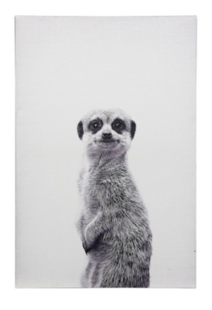 Meerkat Portrait Canvas Art