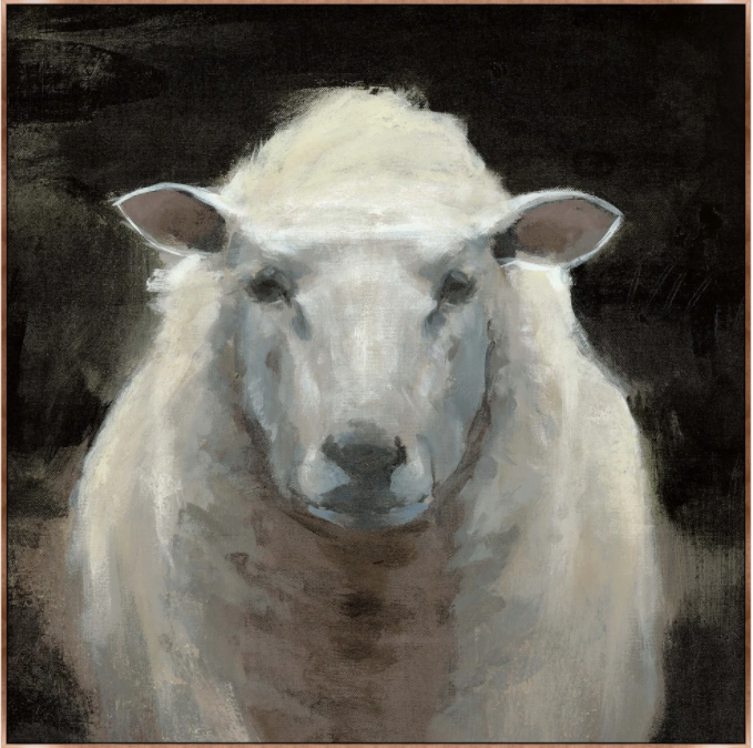 Portrait Of a Sheep II