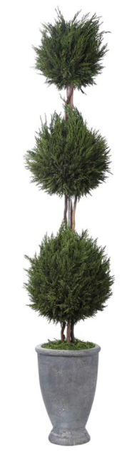Cypress Triple Topiary