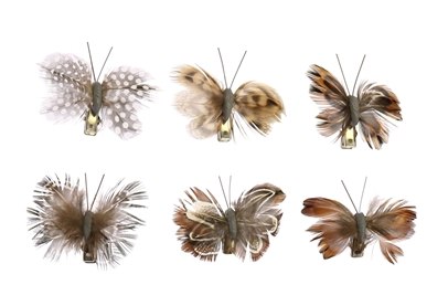 Mini Butterflies on Clips - 13 Hub Lane   |