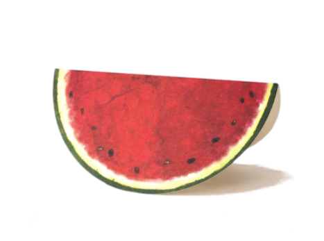Watermelon Place Cards - 13 Hub Lane   |  Place Card