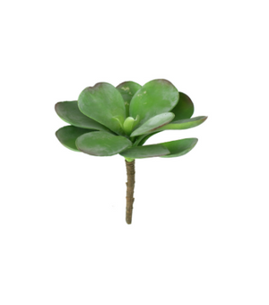 Artificial Paddle Plant - 13 Hub Lane   |