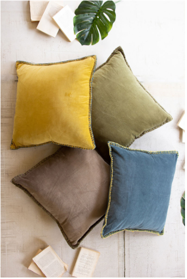 Velvet Throw Pillow - 13 Hub Lane   |