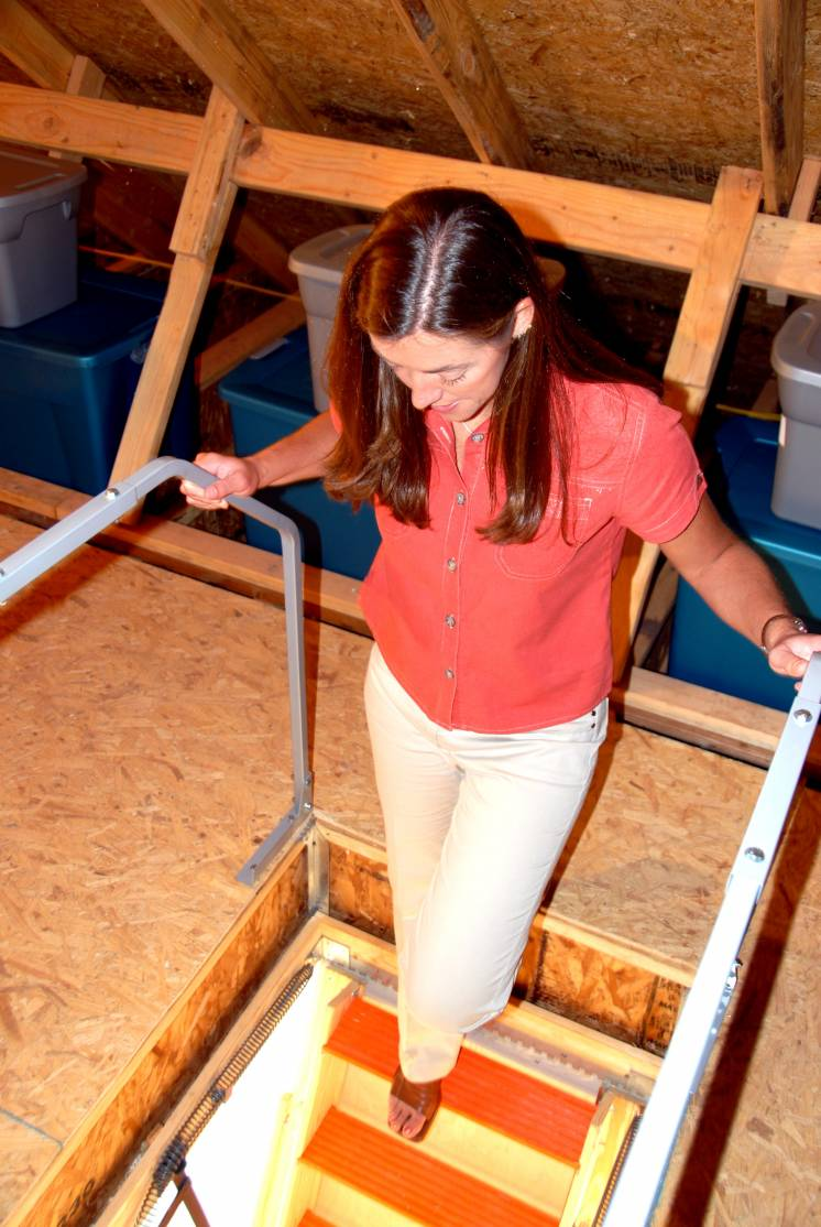 Image of girl and attic ladder