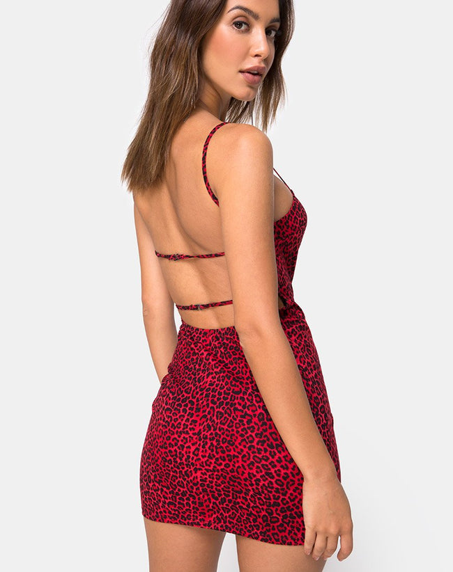 Cinelle Bodycon Dress in Coloured Animal by Motel
