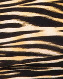 Coga Off Shoulder Top in Zip's Zebra Brown By Motel