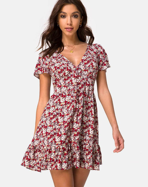 Laily Skater Dress in Floral Charm Red by Motel