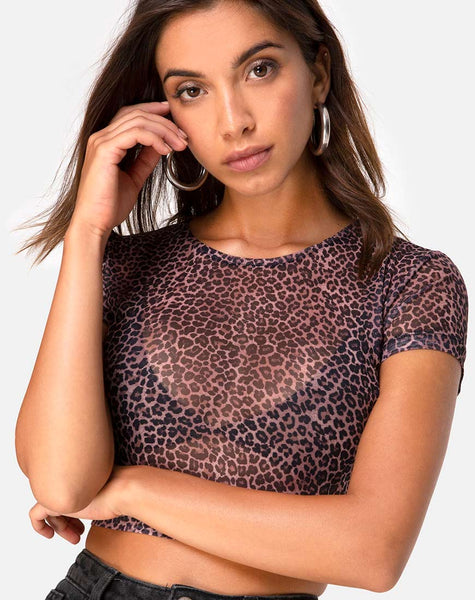 Tiney Crop Top Tee in Rar Leopard Mesh by Motel