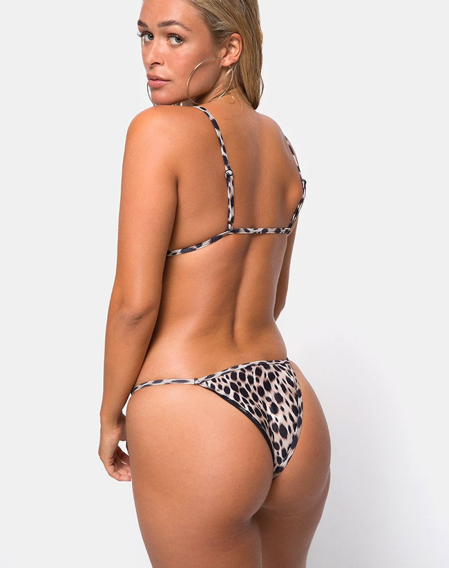 Valter Bikini Top in Original Cheetah by Motel
