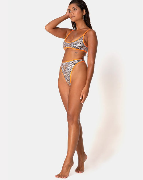 Sikila Bikini Bottom in Mini Tiger with Orange Binds by Motel