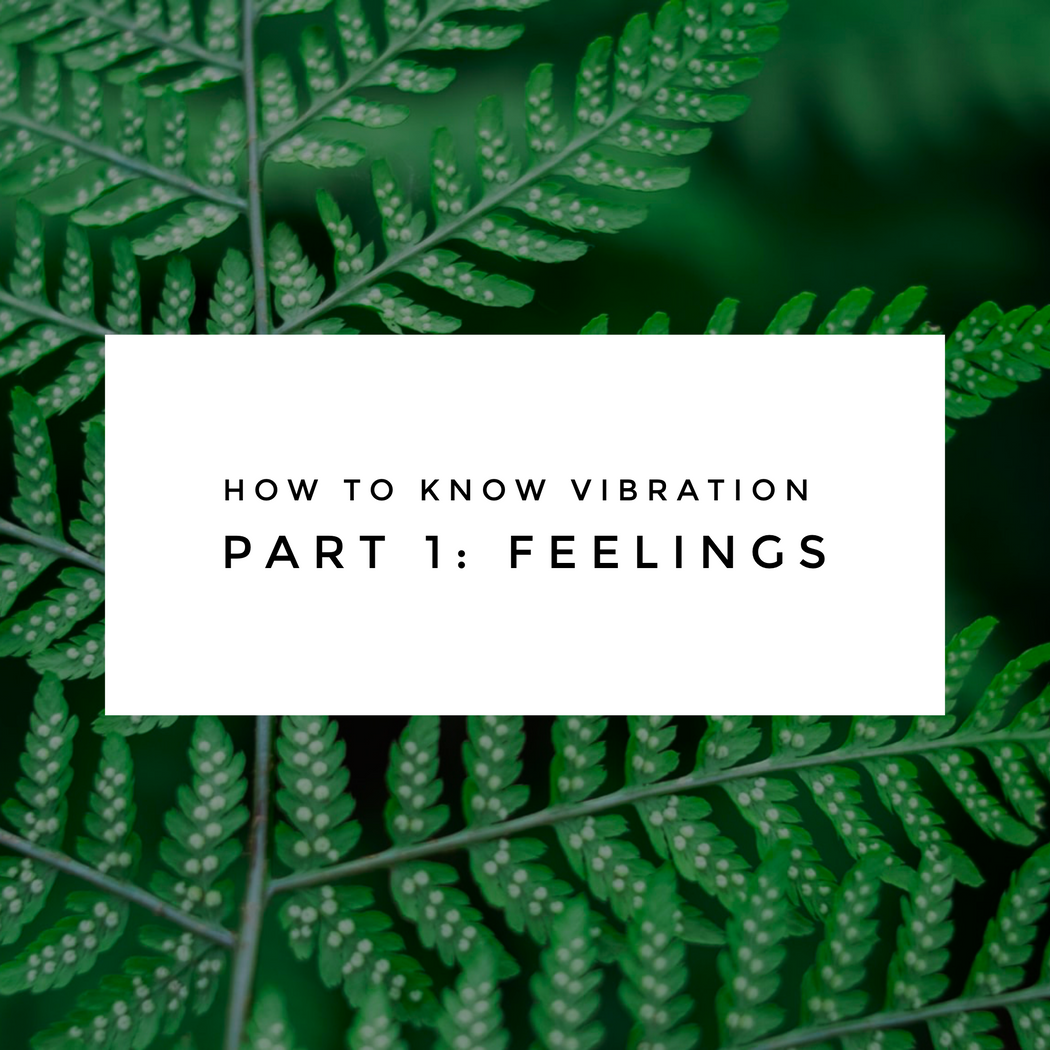 How To Know Vibration Part 1: Feelings