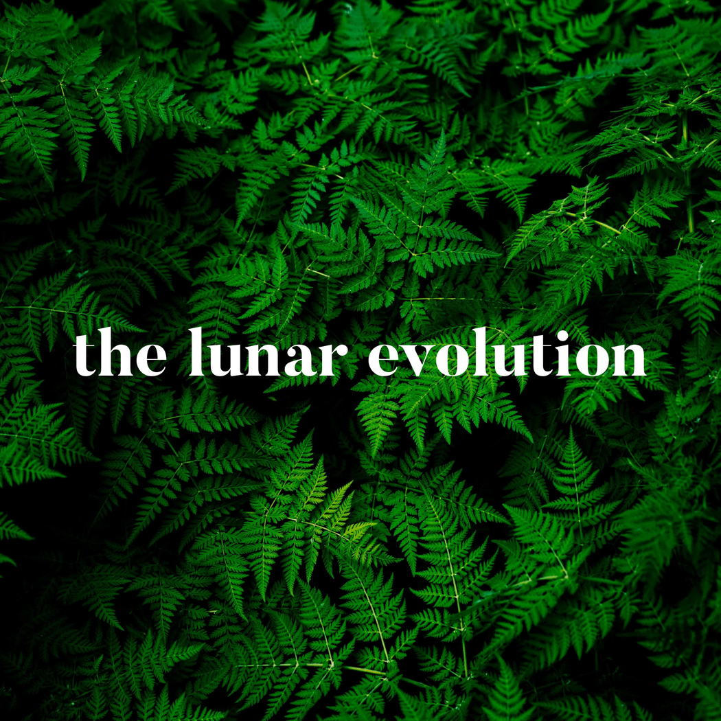 Lunar Evolution
