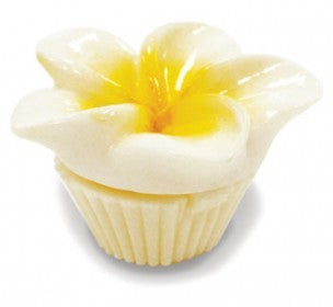 Lip Gloss White Plumeria - The Hawaii Store