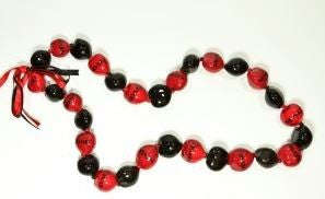 San Diego State University Aztecs Kukui Nut Lei - The Hawaii Store