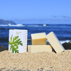 Citronella Natural Soap Beach Bar 3.25 oz - The Hawaii Store