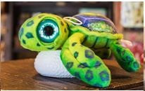 Green Sea Turtle Plush 9''