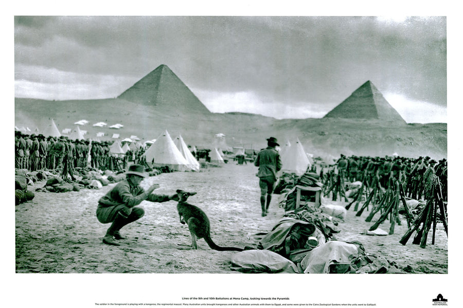 Canvas or Paper Print of ANZACs in Egypt