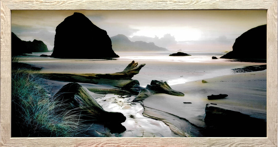 Framed Print of Drift Wood