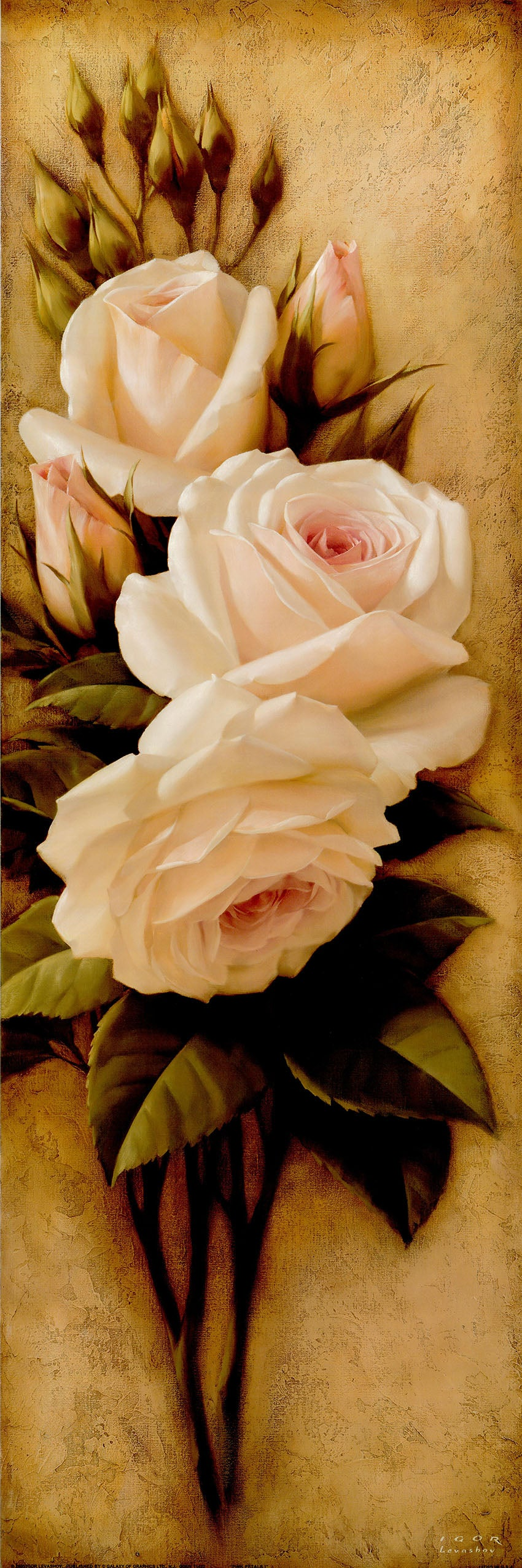 Canvas or Paper Print of Roses