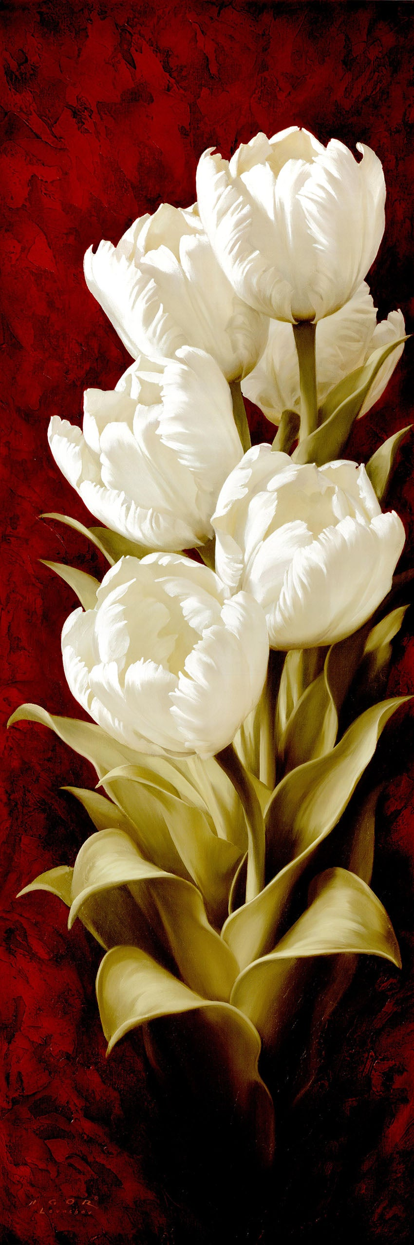 Canvas or Paper Print of White Tulips No.1
