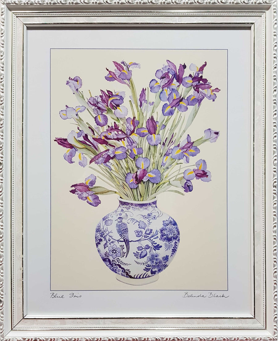 Framed Print of Irises in Vase