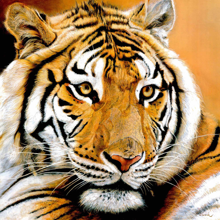Canvas or Paper Print of Tiger No.5