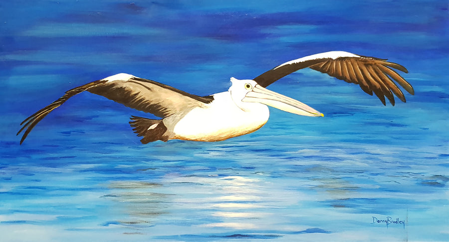 Painting by Danny Bradley of Pelican in Flight (Original)