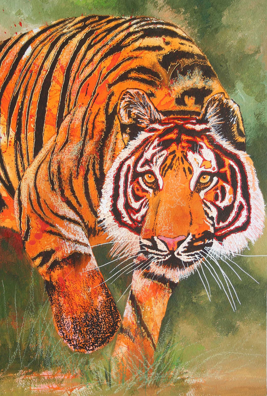 Canvas or Paper Print of Sudden Tiger