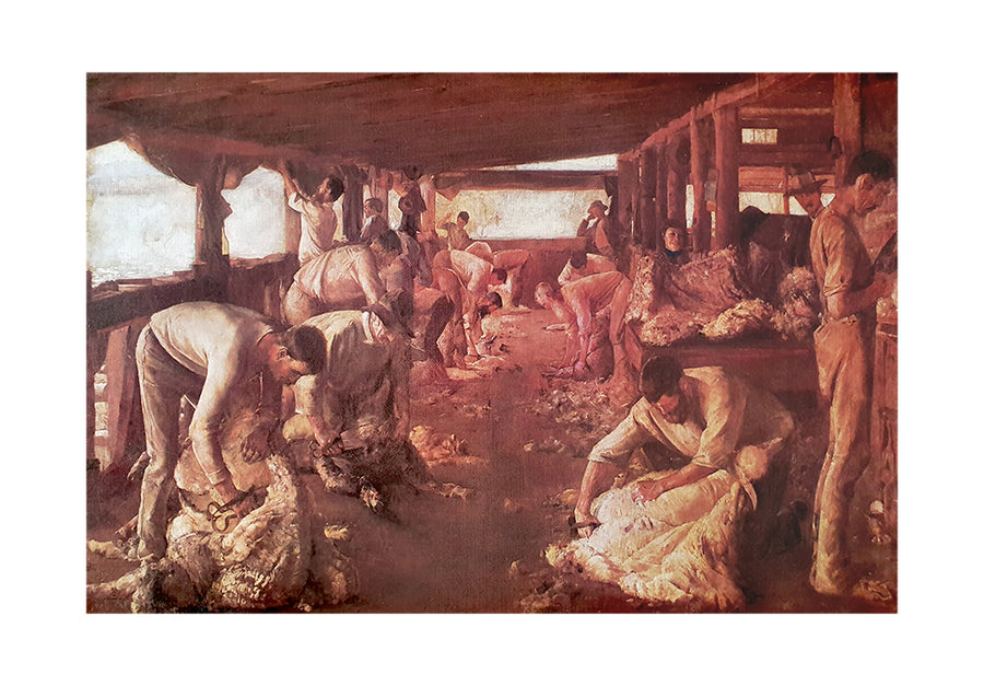 Canvas or Paper Print of Sheep Shearing No.1