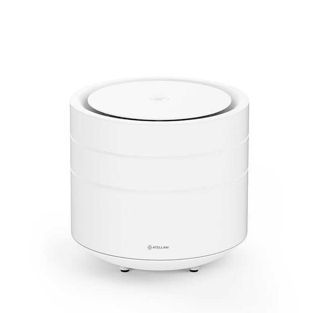 Brid Air Purifier + Carbon Monoxide Alarm