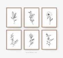 Load image into Gallery viewer, Pencil Botany - set of 6