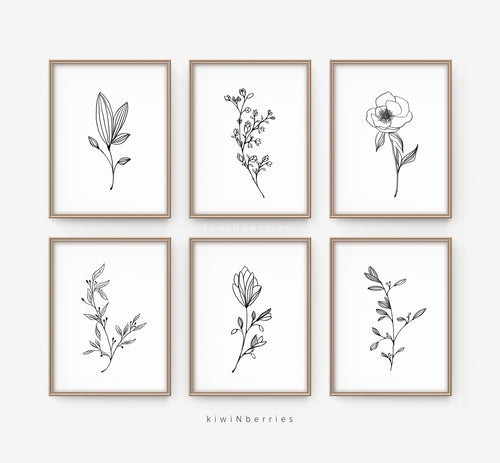 Pencil Botany - set of 6