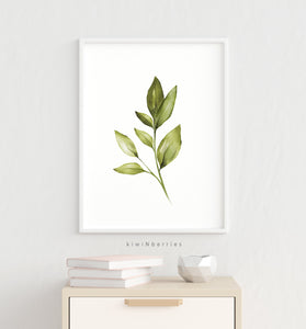 Botanical - set of 4