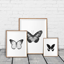 Load image into Gallery viewer, Monochrome Butterflies - set of 4