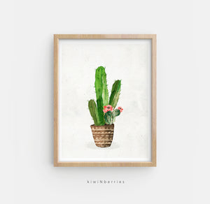 Potted Cactus No.1