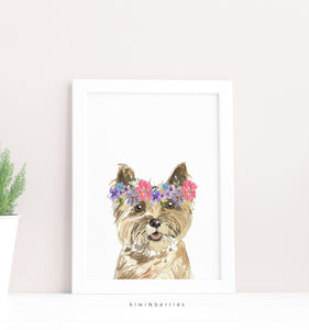 Cool Dogs - set of 4