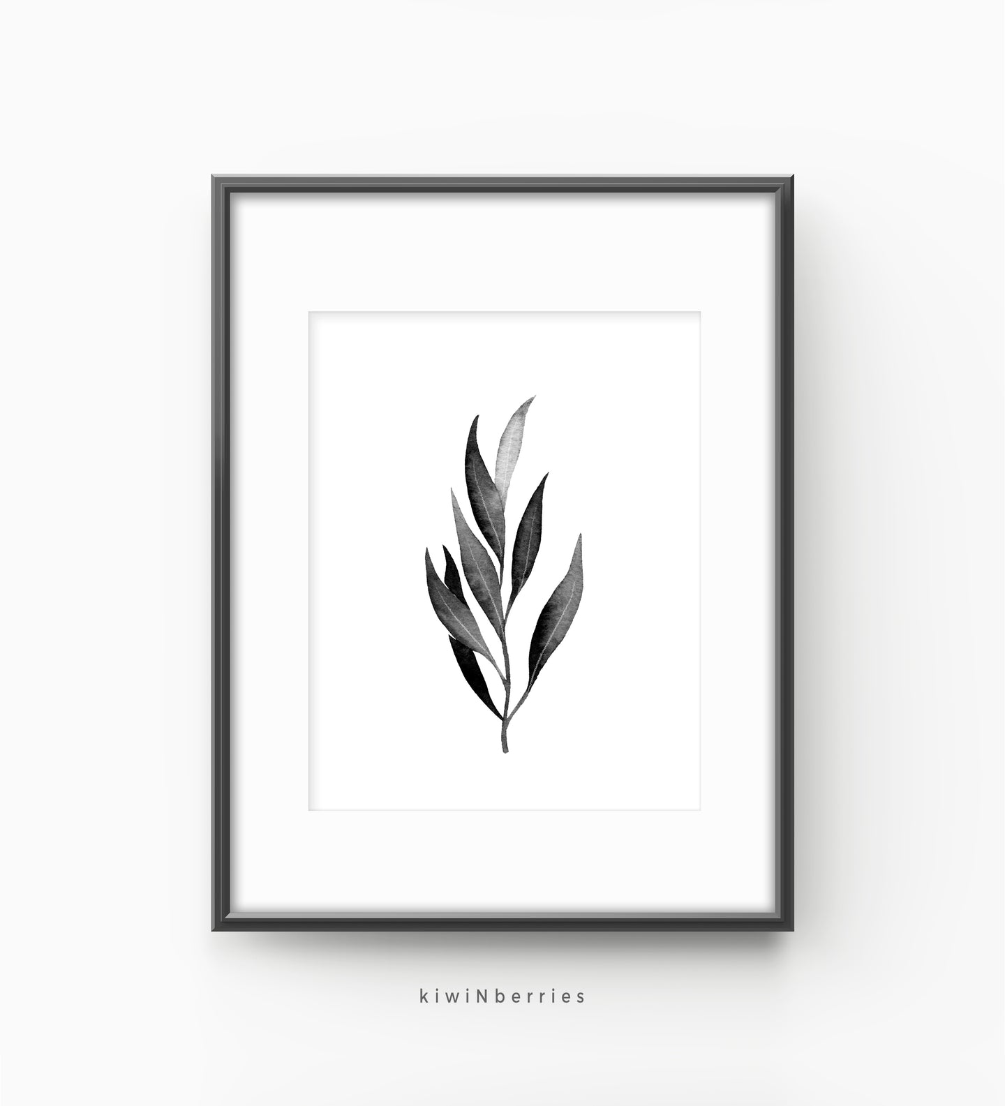 Eucalyptus monochrome leaf No.1